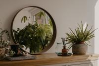 Dining room buffet table with mirror and plants