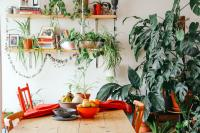 Dining room with a lot of plants along the wall