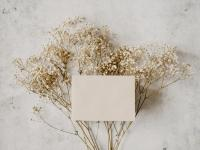 Blank piece of paper over dried flowers