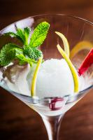 lemon sorbet with garnishes in a martini glass